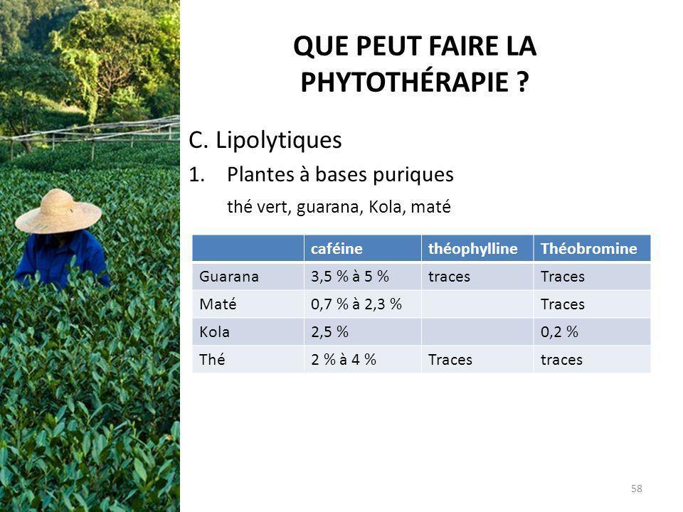 QUE PEUT FAIRE LA PHYTOTHÉRAPIE ? C. Lipolytiques 1.Plantes à bases puriques thé vert, guarana, Kola, maté caféinethéophyllineThéobromine Guarana3,5 %