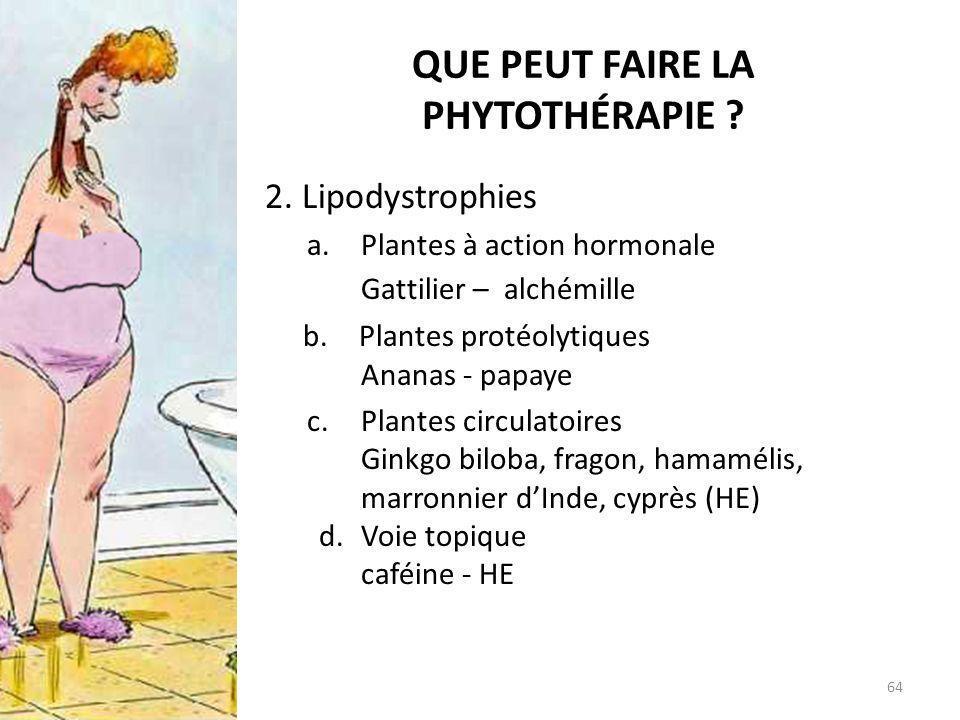 QUE PEUT FAIRE LA PHYTOTHÉRAPIE ? 2. Lipodystrophies a.Plantes à action hormonale Gattilier – alchémille b.Plantes protéolytiques Ananas - papaye c.Pl