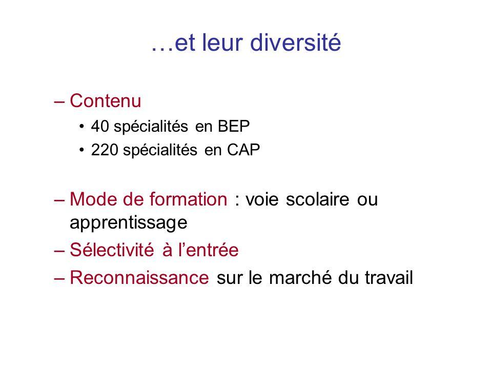 –Contenu 40 spécialités en BEP 220 spécialités en CAP –Mode de formation : voie scolaire ou apprentissage –Sélectivité à lentrée –Reconnaissance sur le marché du travail …et leur diversité