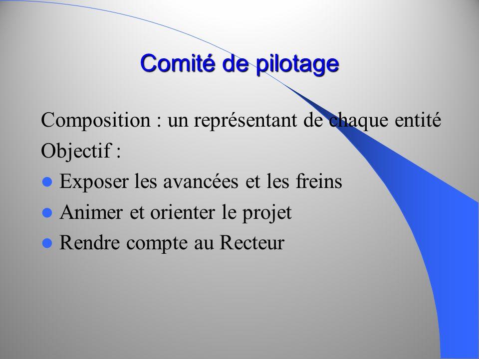 Comité de pilotage Composition : un représentant de chaque entité Objectif : Exposer les avancées et les freins Animer et orienter le projet Rendre co