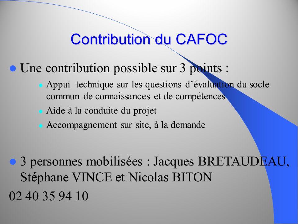 Contribution du CAFOC Une contribution possible sur 3 points : Appui technique sur les questions dévaluation du socle commun de connaissances et de co