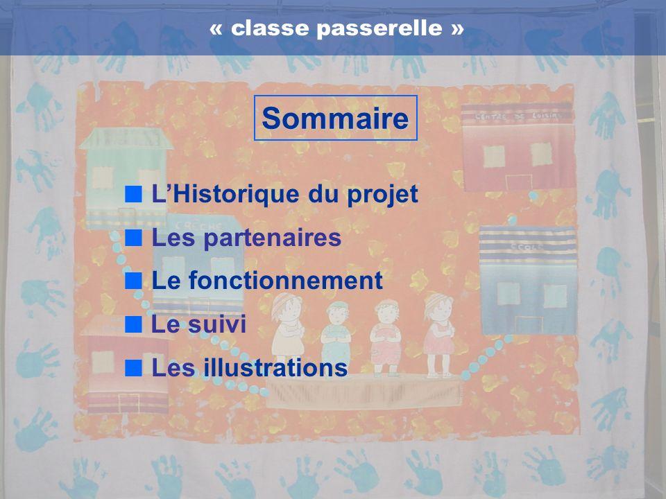 « classe passerelle »Sommaire LHistorique du projet Les partenaires Le fonctionnement Le suivi Les illustrations
