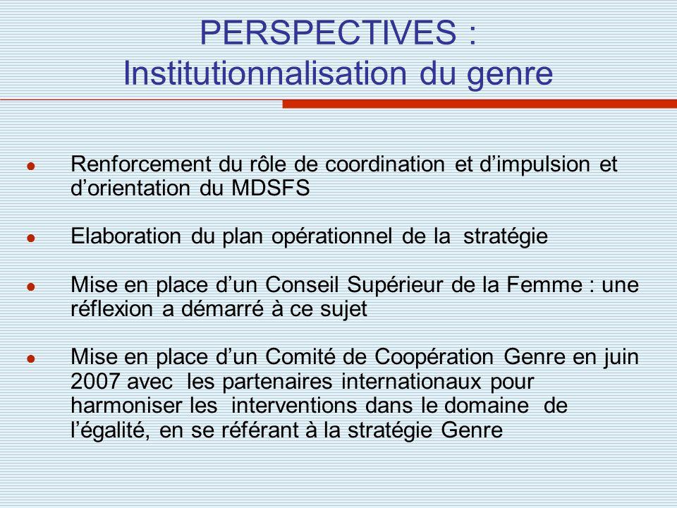 PERSPECTIVES : Institutionnalisation du genre Renforcement du rôle de coordination et dimpulsion et dorientation du MDSFS Elaboration du plan opératio