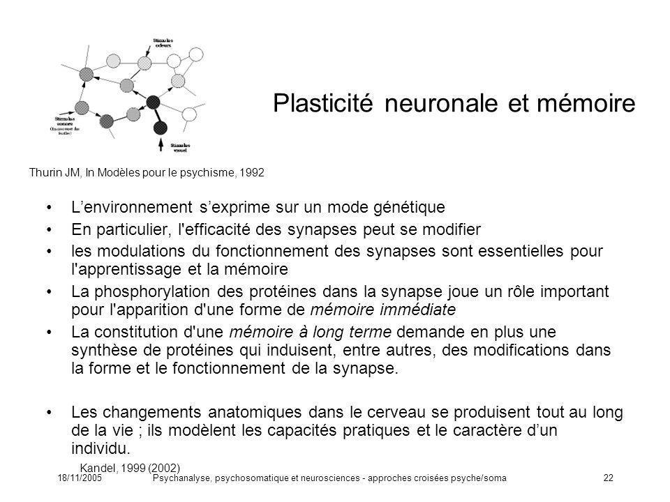 18/11/2005Psychanalyse, psychosomatique et neurosciences - approches croisées psyche/soma22 Plasticité neuronale et mémoire Lenvironnement sexprime su