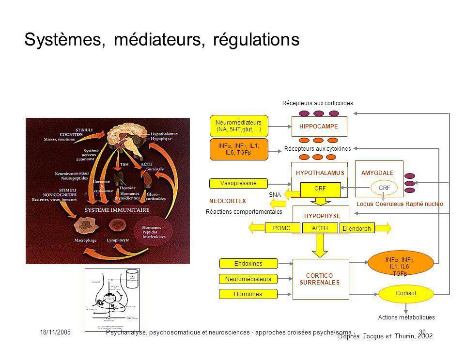 18/11/2005Psychanalyse, psychosomatique et neurosciences - approches croisées psyche/soma30 CRF HYPOTHALAMUS ACTH CORTICO SURRÉNALES HIPPOCAMPE Récept