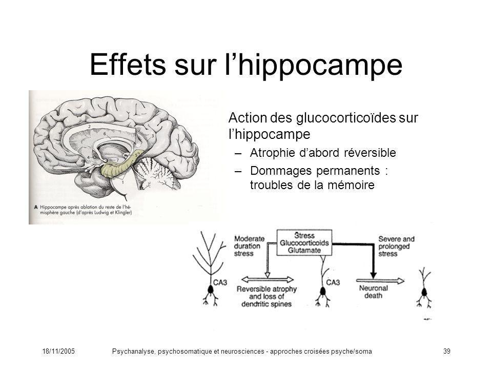 18/11/2005Psychanalyse, psychosomatique et neurosciences - approches croisées psyche/soma39 Effets sur lhippocampe Action des glucocorticoïdes sur lhi
