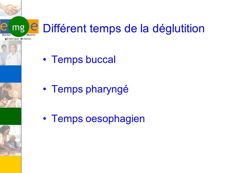 Différent temps de la déglutition Temps buccal Temps pharyngé Temps oesophagien