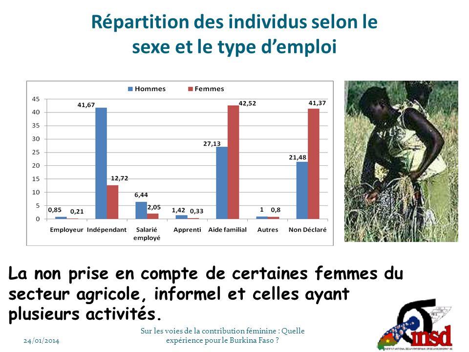Répartition des individus selon le sexe et le type demploi 24/01/2014 Sur les voies de la contribution féminine : Quelle expérience pour le Burkina Faso .
