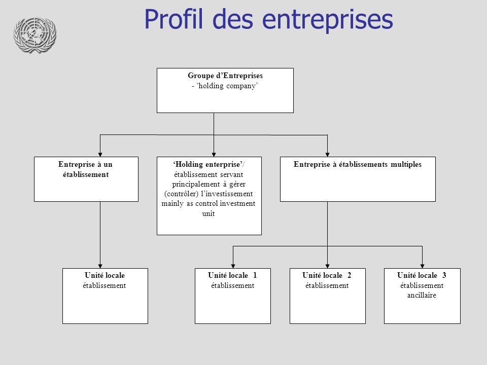 Profil des entreprises Groupe dEntreprises - holding company Entreprise à un établissement Holding enterprise/ établissement servant principalement à