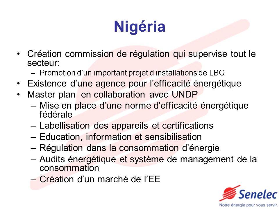 Nigéria Création commission de régulation qui supervise tout le secteur: –Promotion dun important projet dinstallations de LBC Existence dune agence p