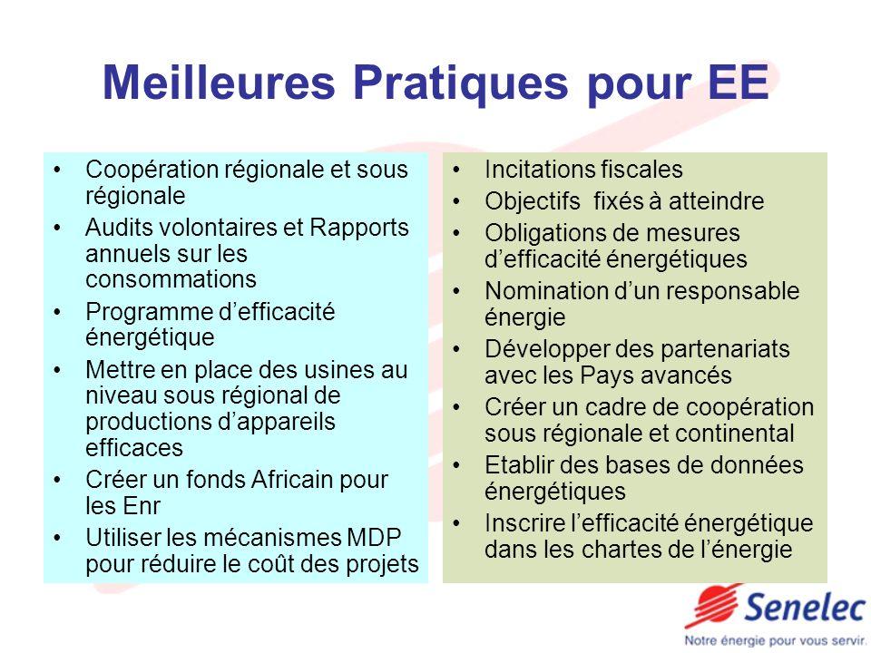 Meilleures Pratiques pour EE Coopération régionale et sous régionale Audits volontaires et Rapports annuels sur les consommations Programme defficacit