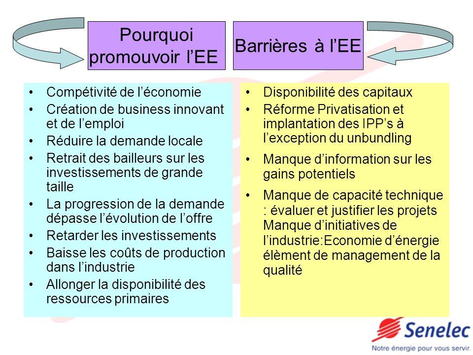 Tunisie Programme de 1000 MW à lhorizon 2010:Mise en place dun cadre attractif pour se faire Renforcement des centres de formation (STEG) Poursuite travaux de R&D dans la géothermie Renforcement des institutions existantes (ANER,STEG) en réalisation dAtlas, dimensionnement, numérisation
