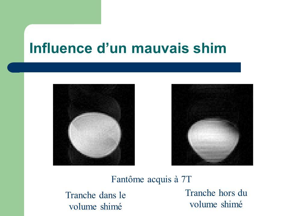 Influence dun mauvais shim Fantôme acquis à 7T Tranche dans le volume shimé Tranche hors du volume shimé