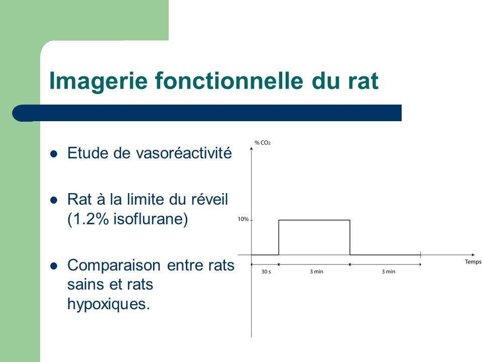 Imagerie fonctionnelle du rat Etude de vasoréactivité Rat à la limite du réveil (1.2% isoflurane) Comparaison entre rats sains et rats hypoxiques.