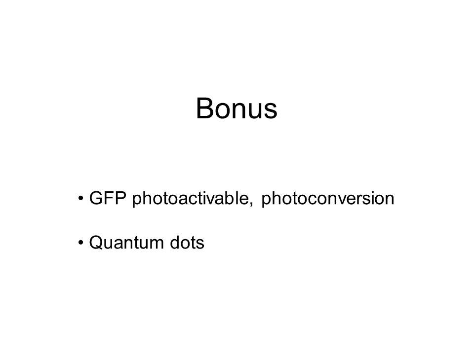 Bonus GFP photoactivable, photoconversion Quantum dots