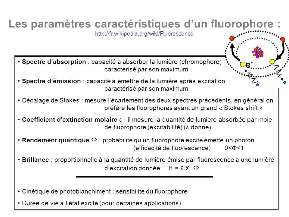 Les paramètres caractéristiques dun fluorophore : http://fr.wikipedia.org/wiki/Fluorescence Spectre dabsorption : capacité à absorber la lumière (chro