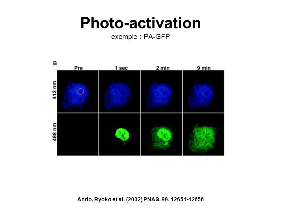 Photo-activation exemple : PA-GFP Ando, Ryoko et al. (2002) PNAS. 99, 12651-12656