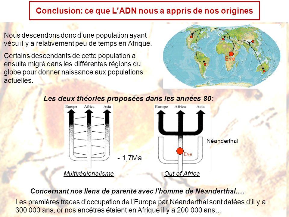 Conclusion: ce que LADN nous a appris de nos origines Nous descendons donc dune population ayant vécu il y a relativement peu de temps en Afrique. Cer