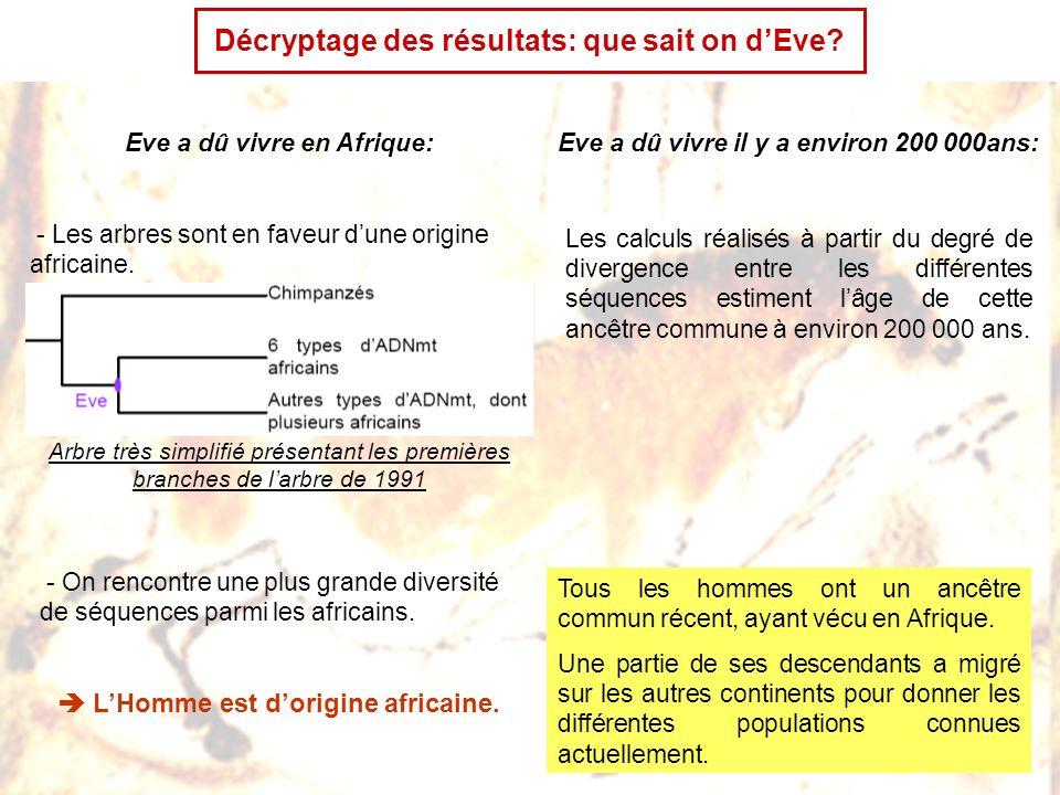 Conclusion: ce que LADN nous a appris de nos origines Nous descendons donc dune population ayant vécu il y a relativement peu de temps en Afrique.