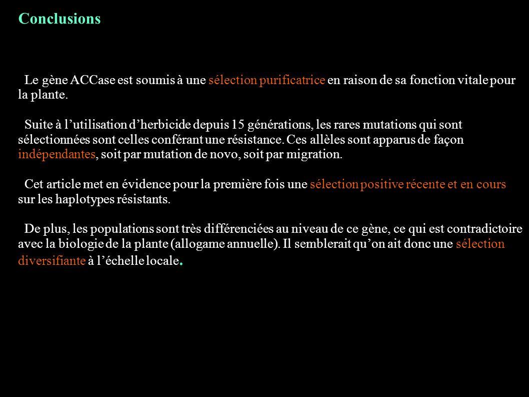 Conclusions Le gène ACCase est soumis à une sélection purificatrice en raison de sa fonction vitale pour la plante. Suite à lutilisation dherbicide de