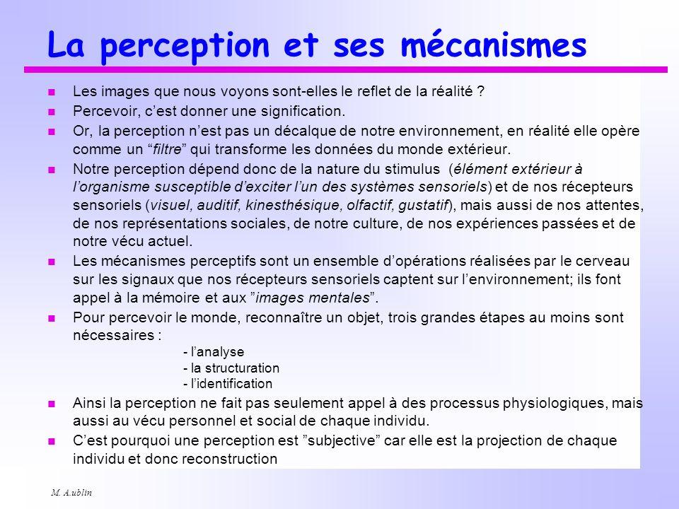 M. A.ublin La perception et ses mécanismes n Les images que nous voyons sont-elles le reflet de la réalité ? n Percevoir, cest donner une significatio