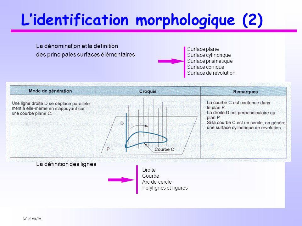M. A.ublin Lidentification morphologique (2) La dénomination et la définition des principales surfaces élémentaires La définition des lignes Droite Co