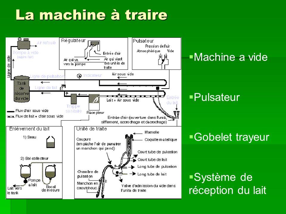 La machine à traire Machine a vide Pulsateur Gobelet trayeur Système de réception du lait