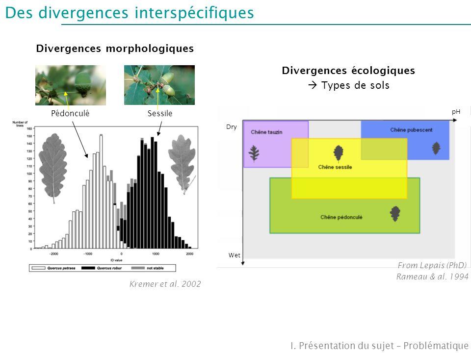 Des divergences interspécifiques Divergences morphologiques Divergences écologiques Types de sols SessilePédonculé Wet Dry pH Kremer et al. 2002 From