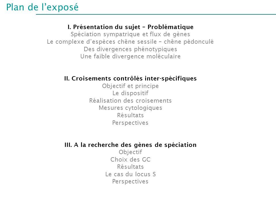 Plan de lexposé I. Présentation du sujet – Problématique Spéciation sympatrique et flux de gènes Le complexe despèces chêne sessile – chêne pédonculé