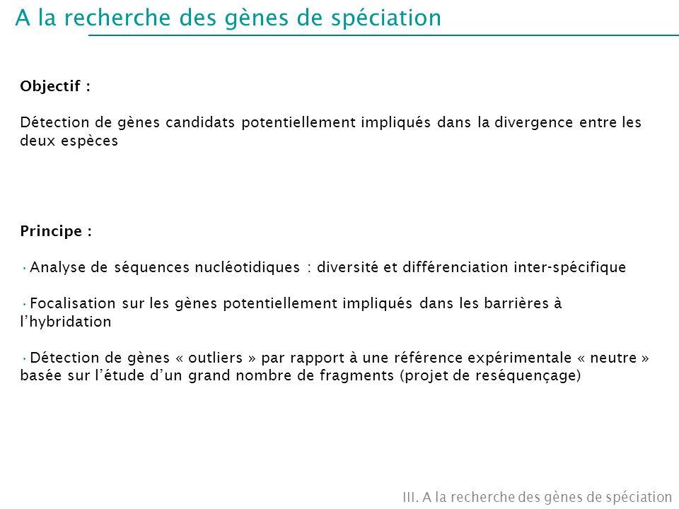A la recherche des gènes de spéciation Objectif : Détection de gènes candidats potentiellement impliqués dans la divergence entre les deux espèces Pri