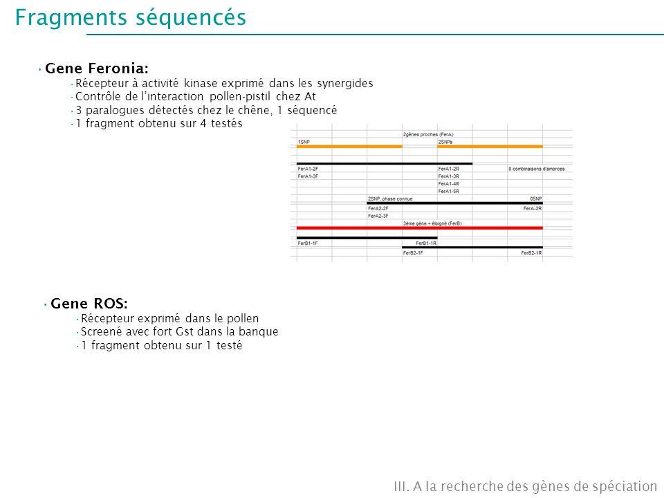 Fragments séquencés III. A la recherche des gènes de spéciation Gene Feronia: Récepteur à activité kinase exprimé dans les synergides Contrôle de lint