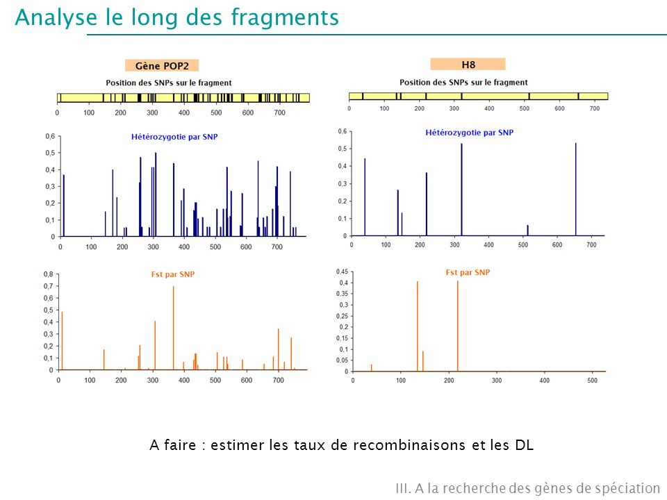 Analyse le long des fragments III.