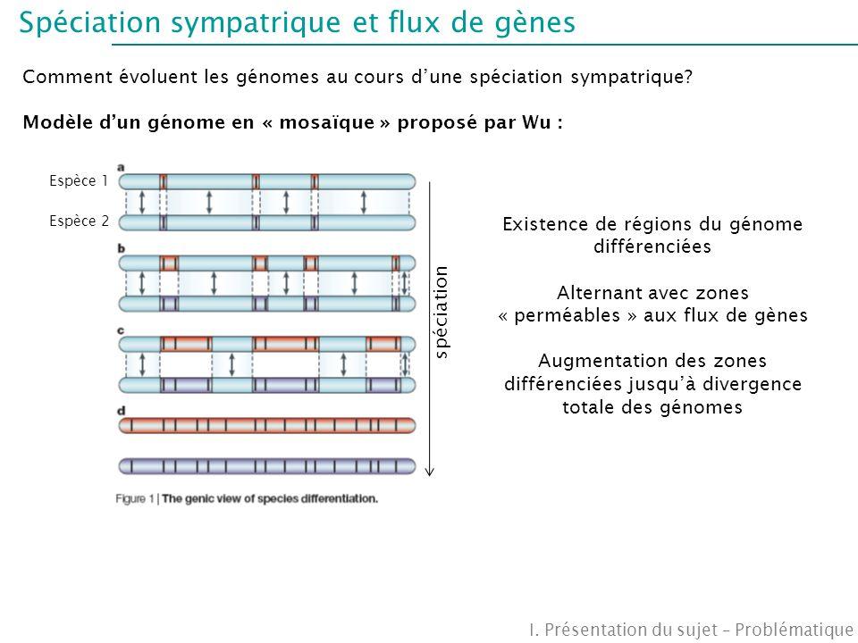 Fragments séquencés III.