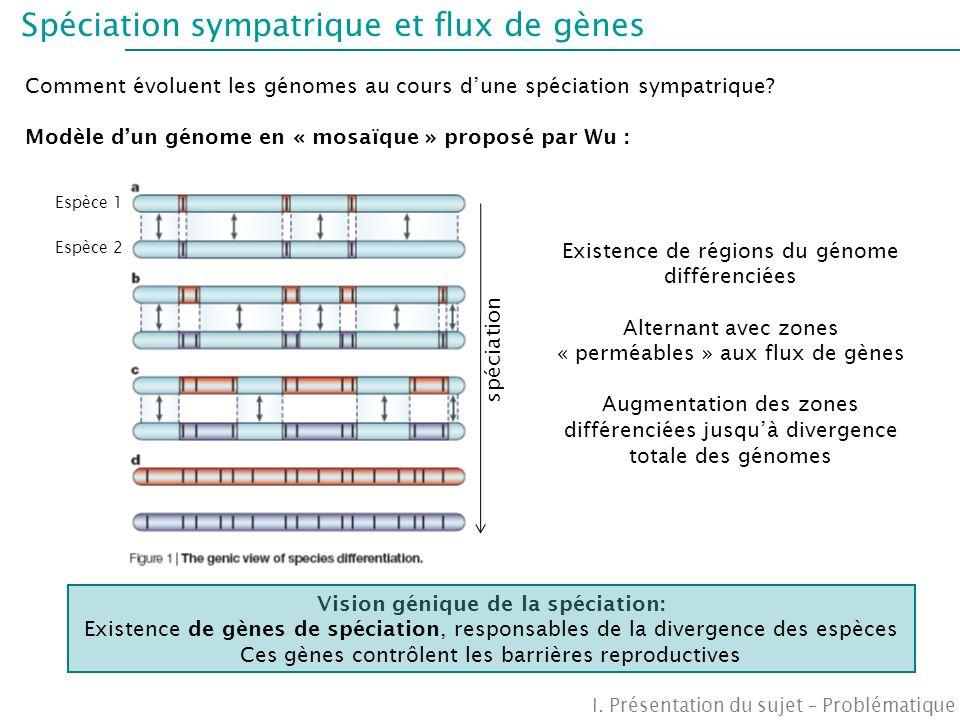 Spéciation sympatrique et flux de gènes Comment évoluent les génomes au cours dune spéciation sympatrique? Modèle dun génome en « mosaïque » proposé p