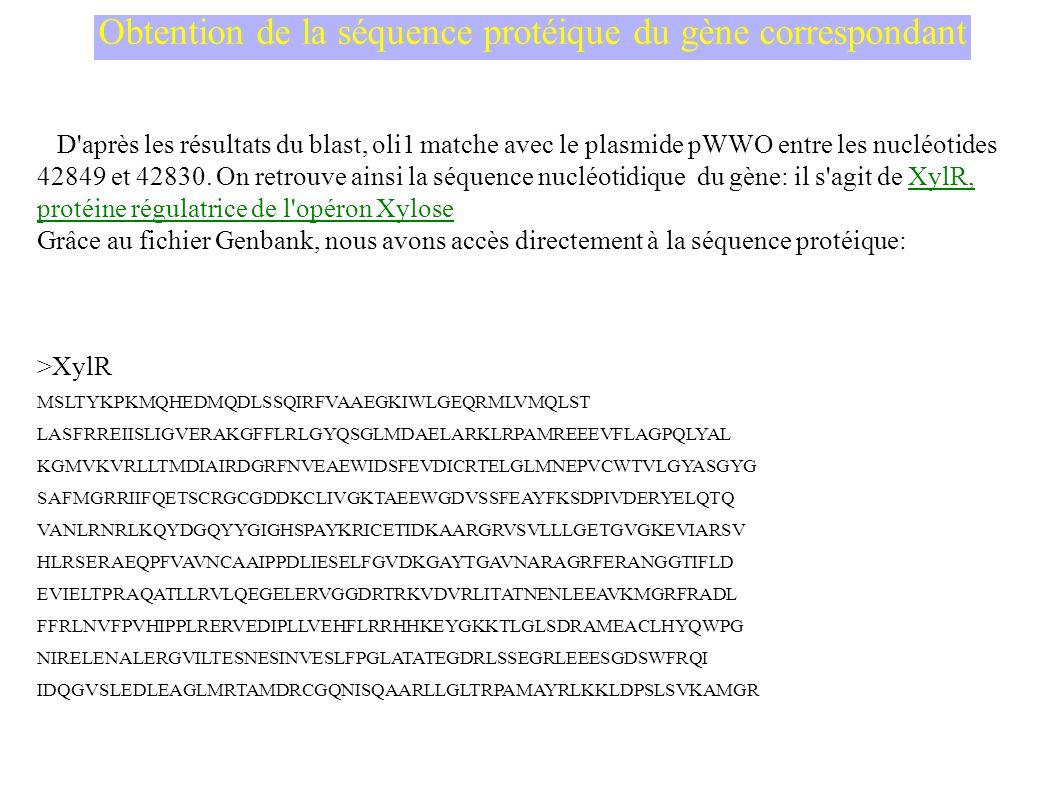 Obtention de la séquence protéique du gène correspondant D après les résultats du blast, oli1 matche avec le plasmide pWWO entre les nucléotides 42849 et 42830.