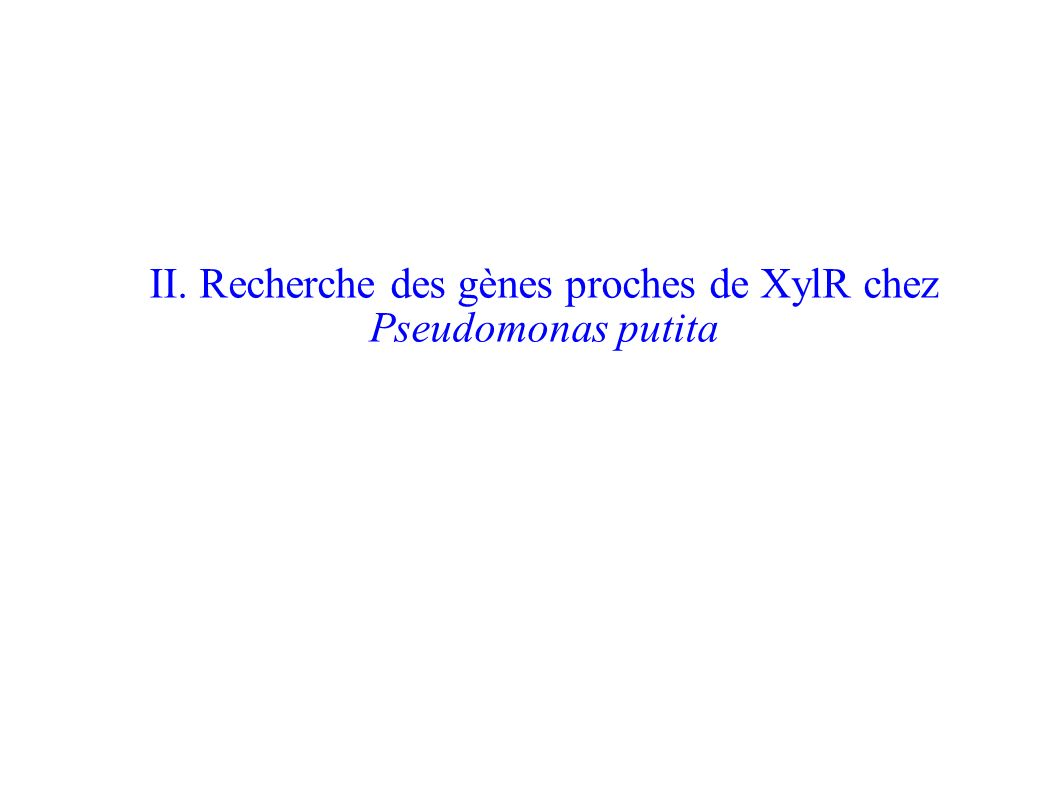 II. Recherche des gènes proches de XylR chez Pseudomonas putita