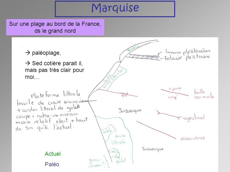 Charleville-Mézière Ardennes Discordance entre Cambrien sup (Révinien) et Dévonien: lacune du Silurien caractéristique de la phase ardennaise de lorogenèse calédonienne.