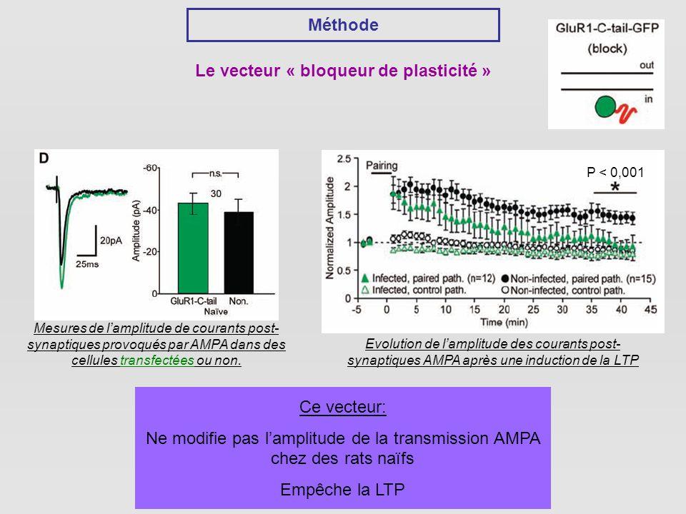Méthode Le vecteur « bloqueur de plasticité » Mesures de lamplitude de courants post- synaptiques provoqués par AMPA dans des cellules transfectées ou non.