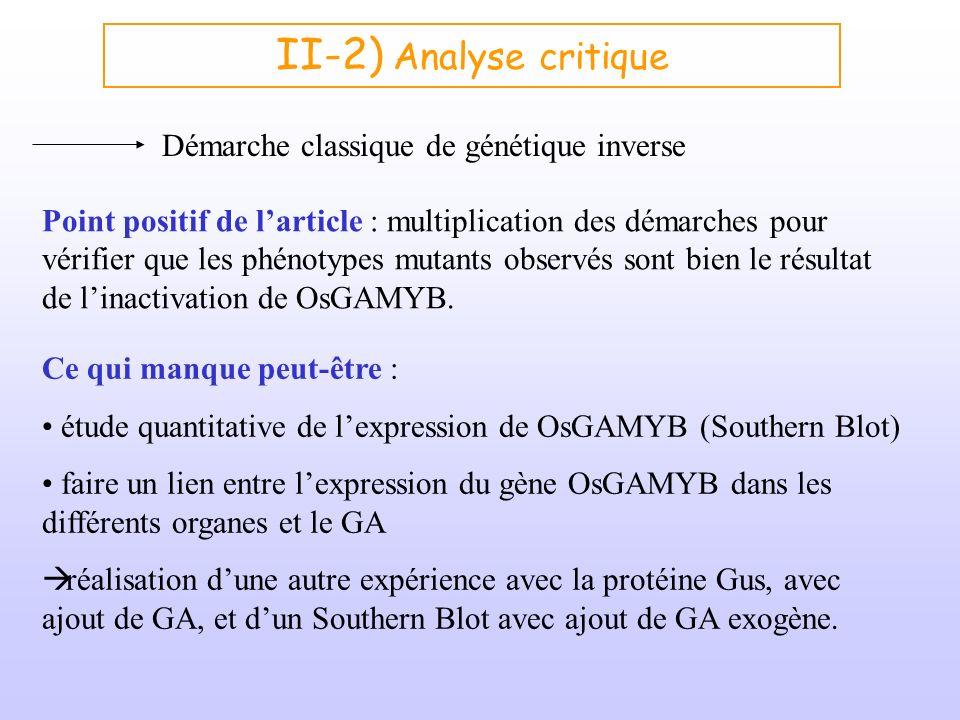 II-2) Analyse critique Point positif de larticle : multiplication des démarches pour vérifier que les phénotypes mutants observés sont bien le résulta