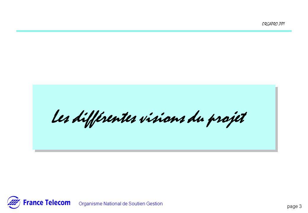 page 3 Information interne Organisme National de Soutien Gestion ORGAPRO.PPT Les différentes visions du projet