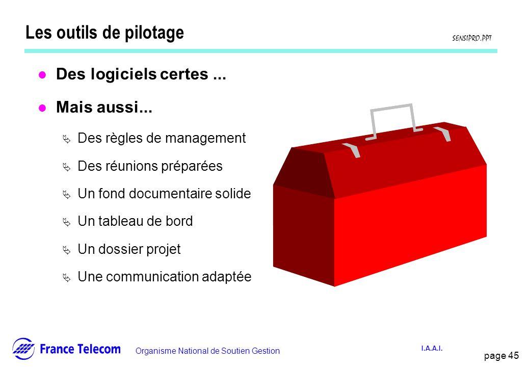 page 45 Information interne Organisme National de Soutien Gestion SENSIPRO.PPT I.A.A.I. Les outils de pilotage l Des logiciels certes... l Mais aussi.