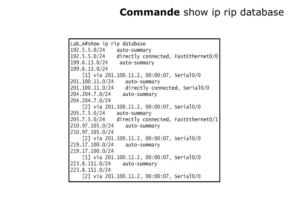 Commande show ip rip database