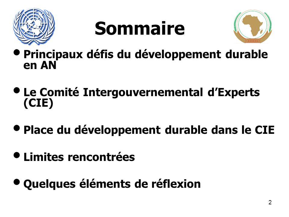 Sommaire Principaux défis du développement durable en AN Le Comité Intergouvernemental dExperts (CIE) Place du développement durable dans le CIE Limites rencontrées Quelques éléments de réflexion 2