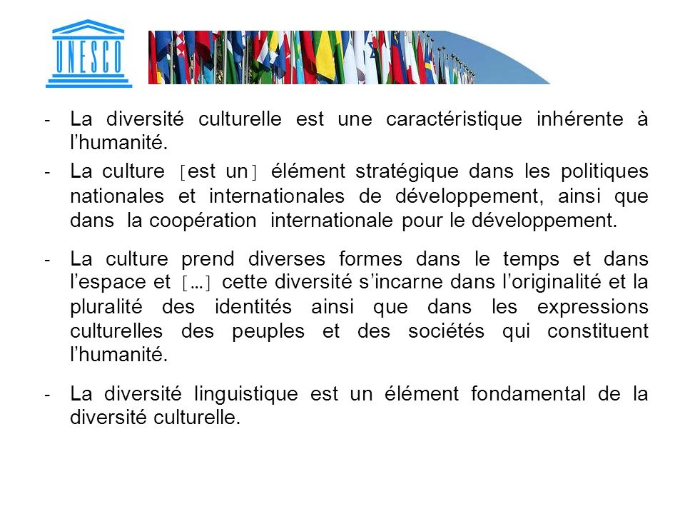 - La diversité culturelle est une caractéristique inhérente à lhumanité. - La culture [est un] élément stratégique dans les politiques nationales et i