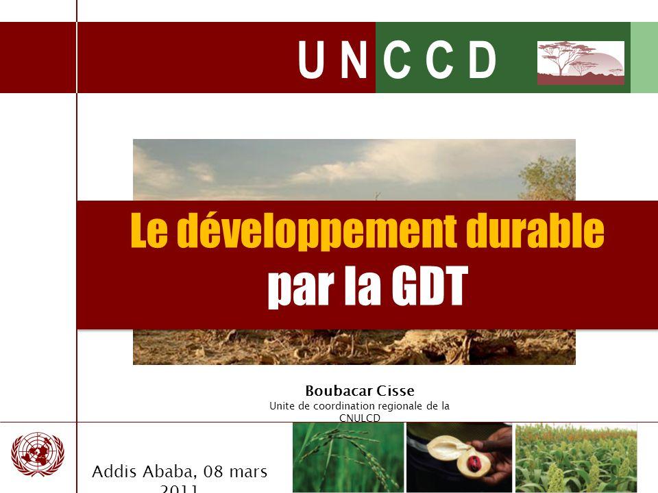 U N C C D La Stratégie Décennale 2008-2018 La Vision: Le but est de mettre en place un partenariat mondial visant à enrayer et à prévenir la désertification et la dégradation des terres et à atténuer les effets de la sécheresse dans les zones touchées afin de concourir à la réduction de la pauvreté et au respect durable de lenvironnement.