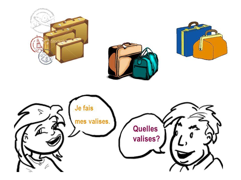 Je fais mes valises. Quelles valises?