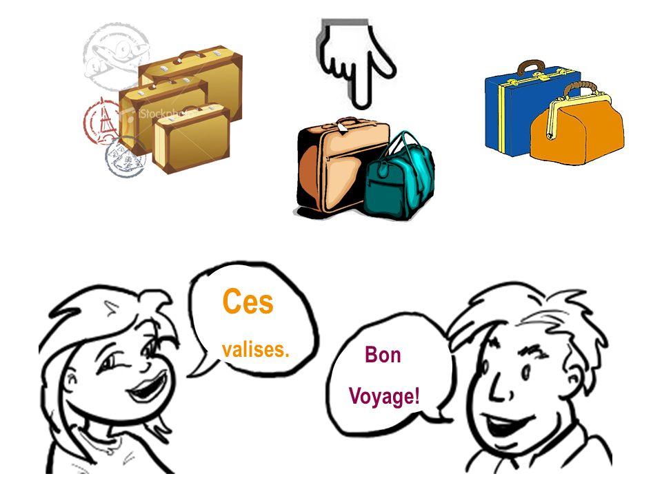 Ces valises. Bon Voyage!