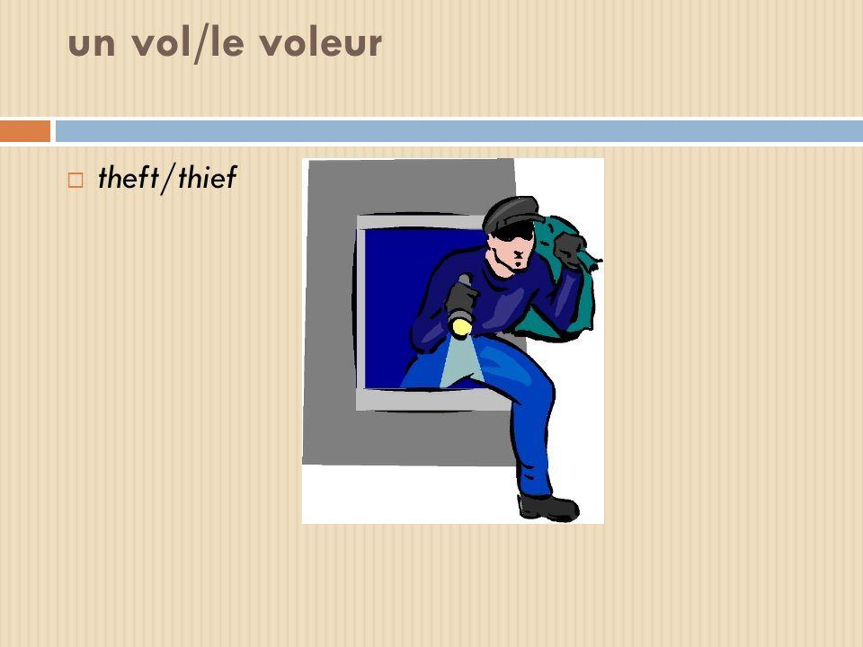 un vol/le voleur theft/thief