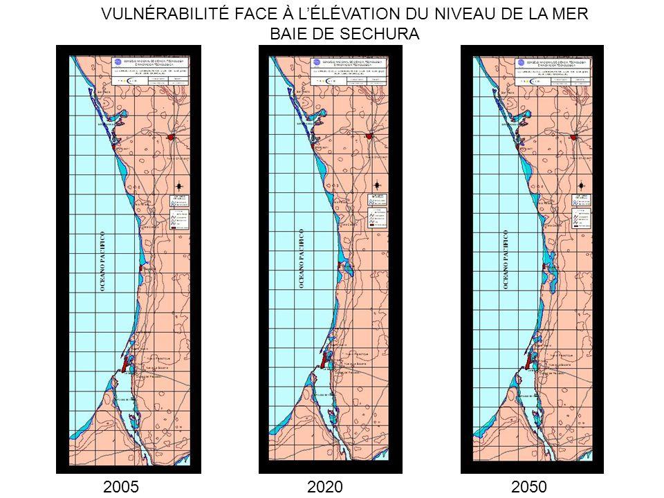 2005 VULNÉRABILITÉ FACE À LÉLÉVATION DU NIVEAU DE LA MER BAIE DE SECHURA 20202050