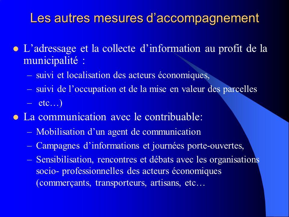 Les autres mesures daccompagnement Ladressage et la collecte dinformation au profit de la municipalité : –suivi et localisation des acteurs économique
